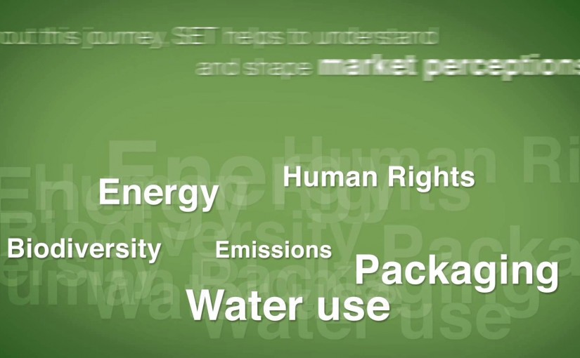 SET — applied sustainability™ in the consumer goods industry – A BASF initiative